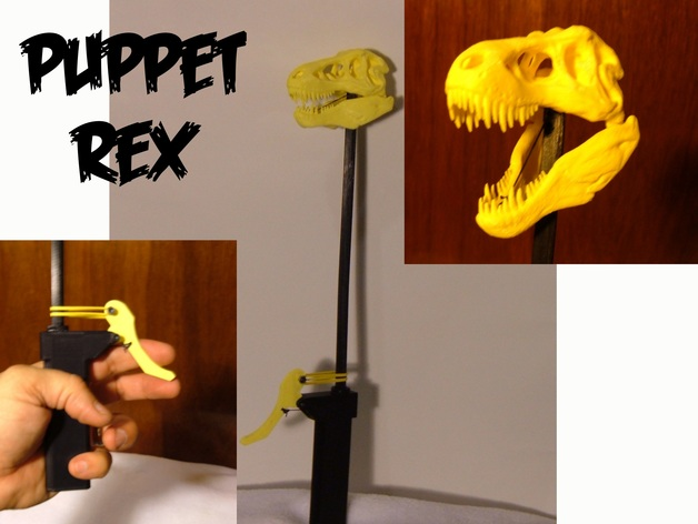 Череп тиранозавра Rex