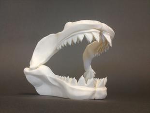 Большая челюсть